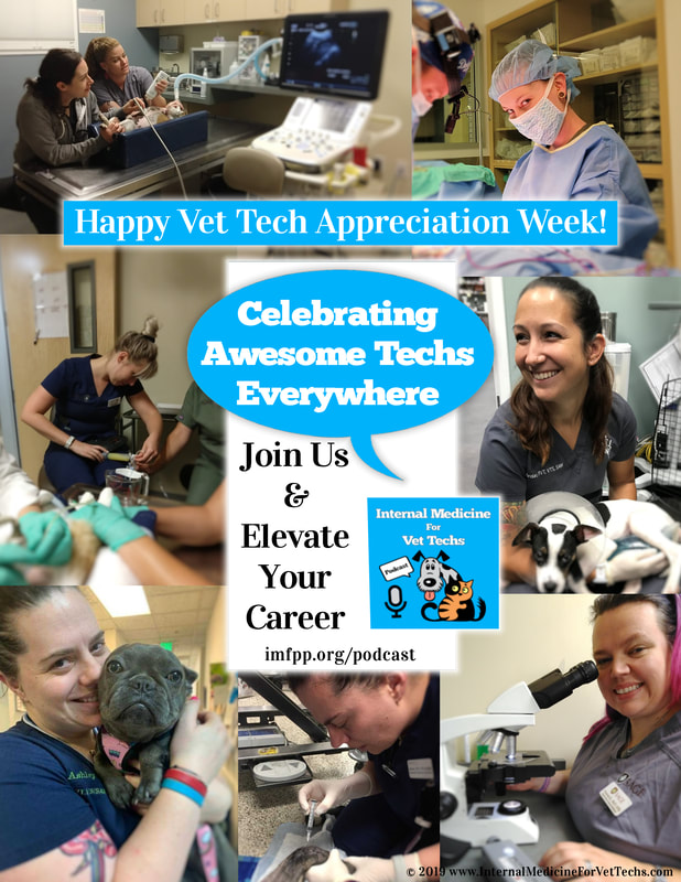 Celebrating Vet Tech Appreciation Week